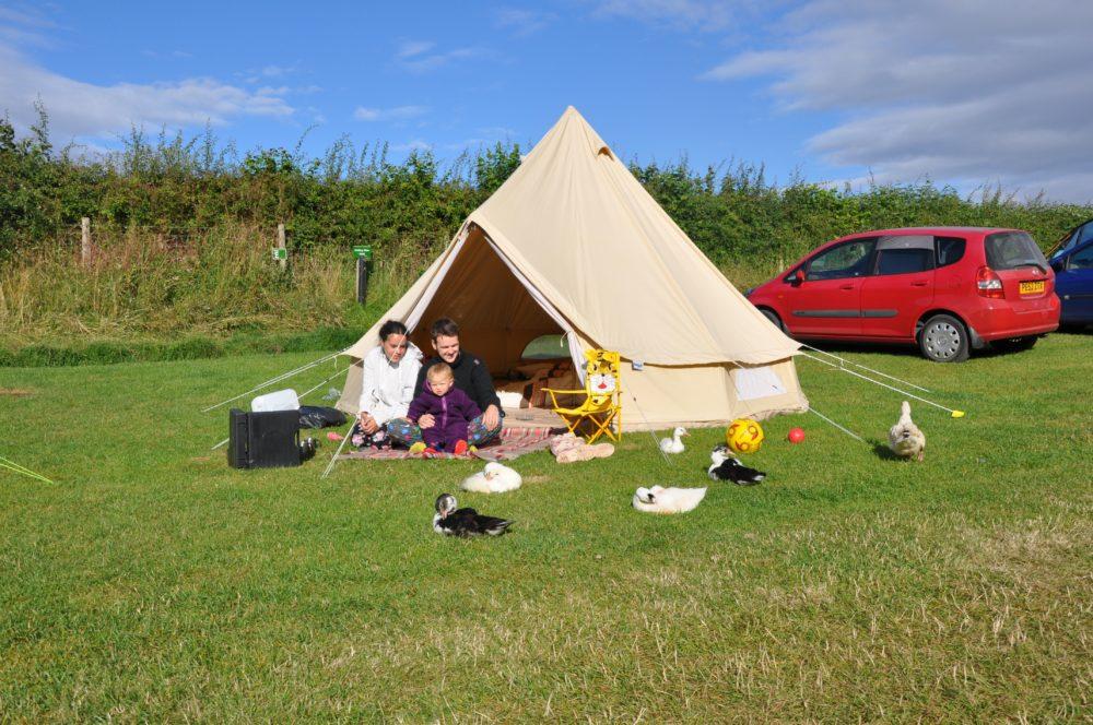 Camping at Humble Bee Farm