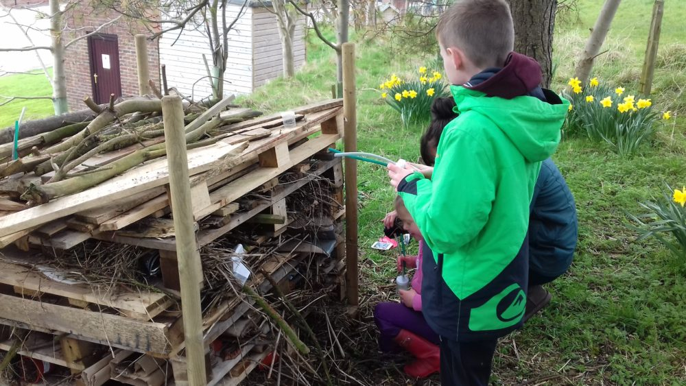 Bug Hotel – Made by guests on our nature events