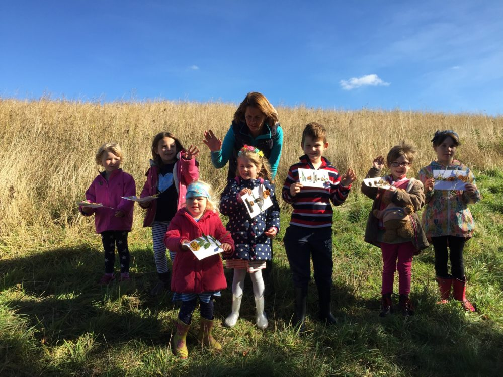 Conservation Weekend – check out 2019's event list!