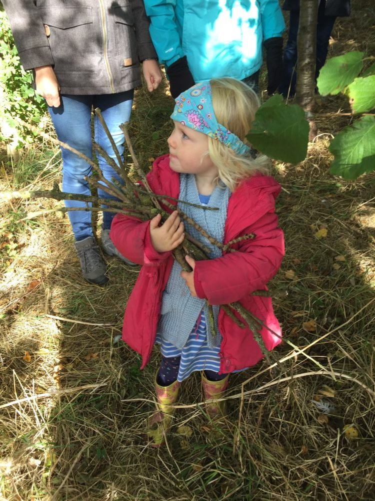 Conservation – check out 2019 events list!