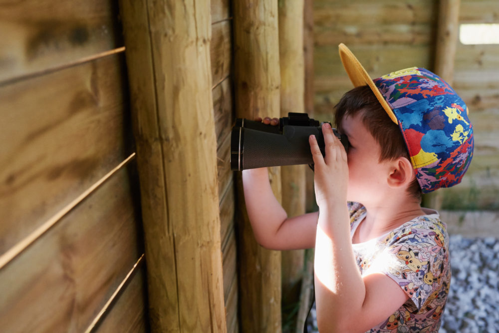 Watch the birds from our bird hide!