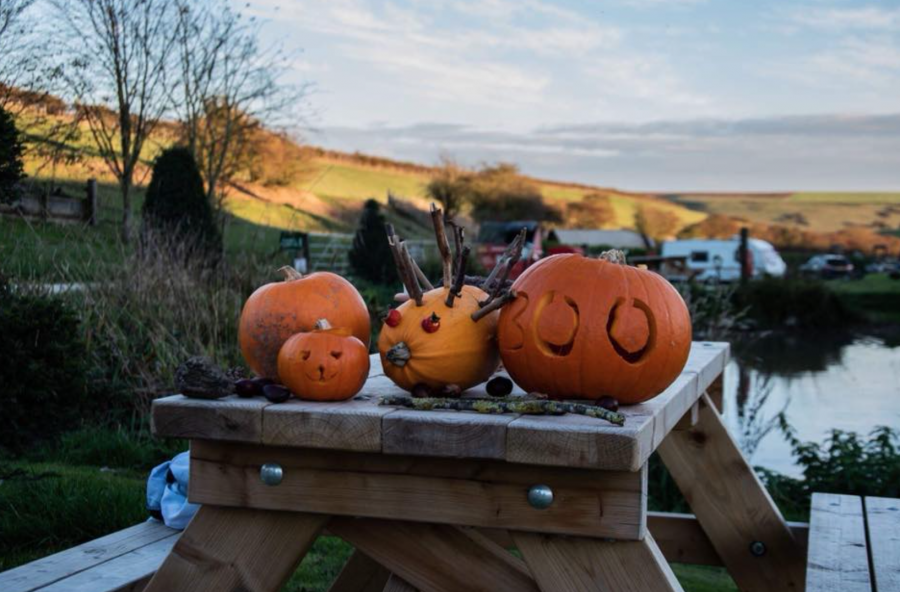 Halloween Weekend with Humble Bee Farm & Magical Quest